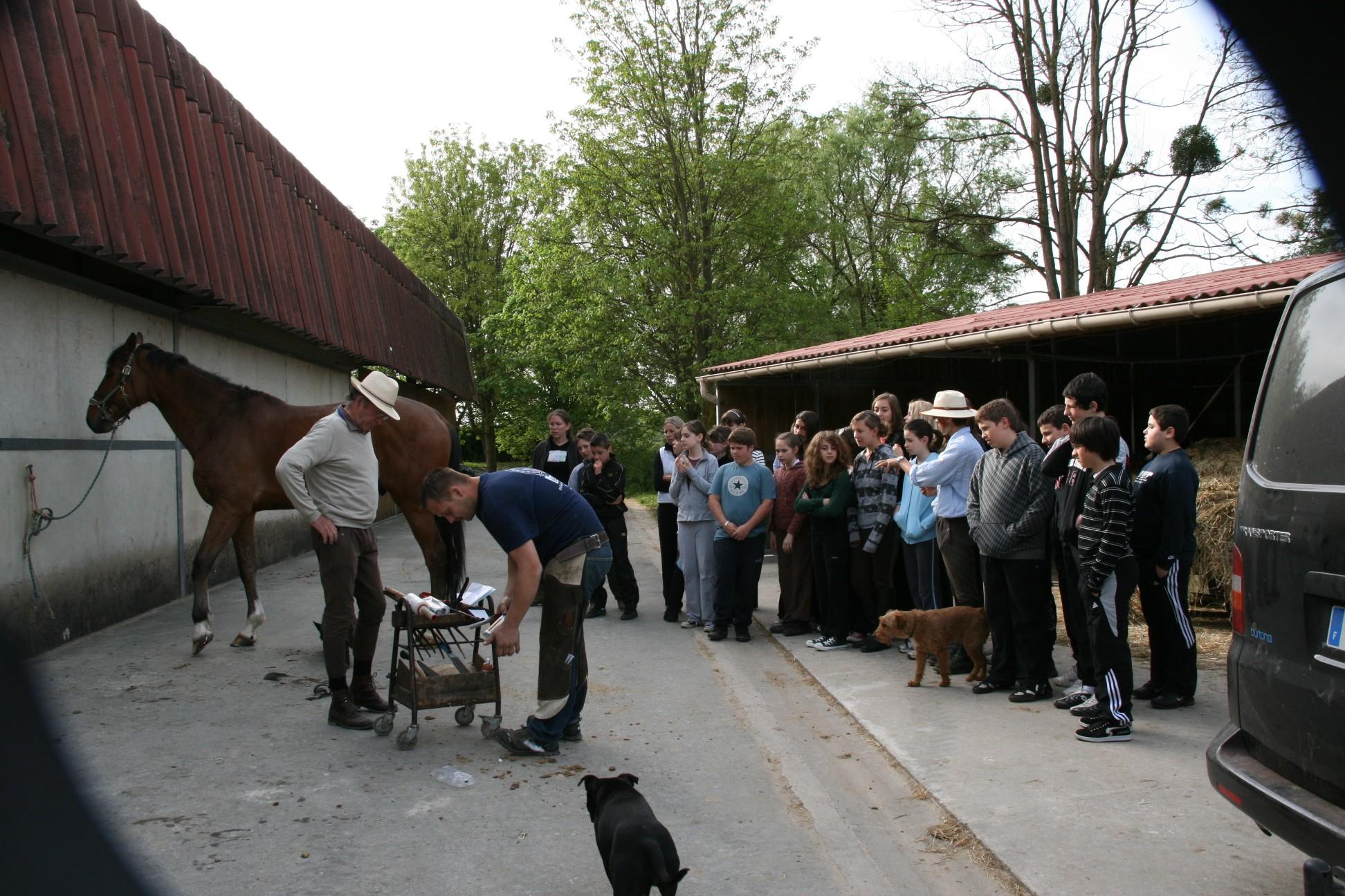 centre equestre de blois